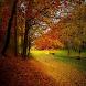Fall Season Wallpapers by Warhawk Enterprise