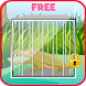 Escape game : Crocodile cage by Sweet Apple Creation
