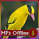 Suara Burung Kepodang Emas Offline untuk Masteran by kicaumania suara burung