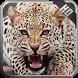 Jaguar Wallpaper by MagicIdea