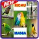 Master Kicau Burung Terbaru by almersaufa developers