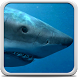 Sharks Live Wallpaper by Creative Factory Wallpapers