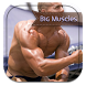 Tips To Get Big Muscles by PerryNelsonfvb