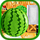 Fate Of Freedom : Melon Rush by Hybriona