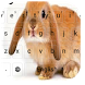 Cute Easter Bunny Keyboard by Keyboard Creative Park