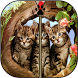 Kitten Zipper Screen Lock by Flag Wallpaper HD HQ Free for mobile