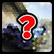 Quiz Videogame! by FrancescON GAME