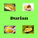 Durian by GE Apps