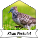 Suara Burung Perkutut +1000 Kicau by Terkicaulah