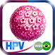 HPV by Web Big Bang