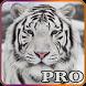 Wild Animals Quiz Pro