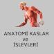 Anatomi Kaslar Türkçe by MyBigTeam