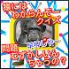 猿には わからんぞークイズ7-待ち合わせ時間1分のヒマつぶし by IPS app