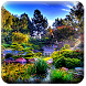 Live Water Garden Wallpaper by Best HD Free Live Wallpapers