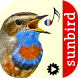 Chants d'oiseaux automatique by Sunbird Images