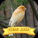 Master Kenari Kicau Juara by Sekarung Barokah Studio