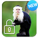 Capuchin Monkey Screen Lock by Summer Time Lock