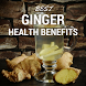 Health Benefits Of Ginger by Leon Technologies