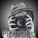 Pichaku by Terabitz