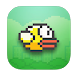 Flappy Bird Pro