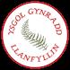 Ysgol Gynradd Llanfyllin