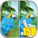 Look at the Difference 158 by Find the Difference Free
