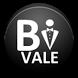 Bi Vale by bigApps