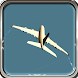 Airplane Flight Simulator 3D by 3d Fever