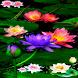 Multicolor Lotus LWP by Daksh Apps