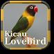 Kicau Lovebird by Espas Media