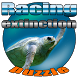Puzzle Racing Extinction