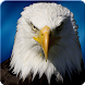 Ultimate Eagle Simulator 3d by Peanut Butter Labs