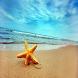Ocean online Relax