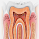 Miniatlas de Odontología by ec-europe
