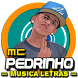 Musica Mc Pedrinho Letras Mp3 Funk Brasil 2017 by OST LAGU INDO HITZ