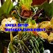 Aneka Resep Masakan Jawa Barat by Ari Wibawa Dev,