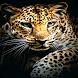 Leopard Wallpaper by VamosApps