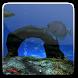 Ocean Aquarium 3D Free by Winterlight