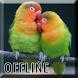 Suara Lovebird Ngekek Panjang by Smanxar Studio