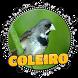 FÊMEA DE COLEIRO MACHEANDO by Raja Burung App