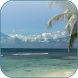 Beach Video Live Wallpaper by 3D Video Live Wallpapers