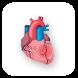 EASY HEART by Navtek