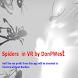 SpidersVR
