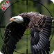 Eagle Bird Hunting Season 2017 by Shooting & Hunting Games