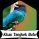 Suara Burung Tengkek Buto +1000 Kicau by Terkicaulah