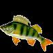 Советы рыбаку by pibaapk