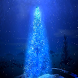 Christmas Tree Live Wallpaper by Whitetail Lane