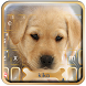 Cuteness Puppy Keyboard Theme by Best Design Keyboard Theme - 2018 Android