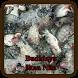 Budidaya Ikan Nila by E-book App