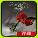 Butterfly Vase Live Wallpaper Theme by CG-Live-Wallpapers